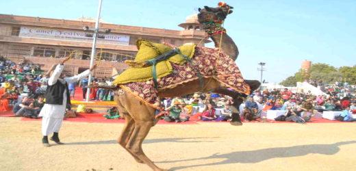 This international festival is going to start soon in Bikaner