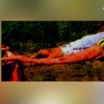 भरतपुर के इस किसान के खेत की गाजर को देख हर कोई रह जाता है दंग, जानें क्यों..
